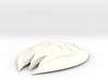 Skyrim Glass Shield 3d printed