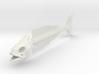 "FISH SKELETON 12"" 3d printed"