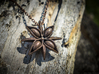 Anise Pendant 3d printed Polished Bronze Steel