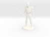 3 inch Avacynian Paladin statue 3d printed