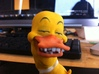 The Joyful Duck 3d printed recognizing the new world around him.