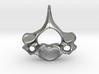 Cervical Neck Vertebra from a Human 3d printed