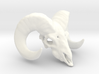 11:11 - The Ram Head Amulet 3d printed