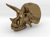 Triceratops Dinosaur Skull 3d printed