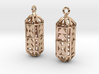 Octagon Cage Earrings 3d printed