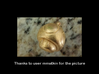 1UP Mushroom pendant 3d printed Actual product picture, shown here in polished gold steel