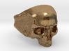 Silver Skull 3d printed