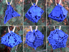 Botanical Dice Ornament Set 3d printed In Royal Blue Strong & Flexible Polished