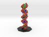 DNA Molecule Model Upright 3d printed
