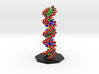 DNA Molecule Model Coding Text. Vertical. 2 Sizes. 3d printed