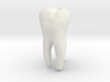 Molar Tooth 200mm-1 ---Backenzahn 200mm-1 3d printed