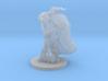Raven Barbarian Miniature 3d printed