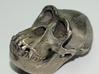 Chimpanzee skull 52mm 3d printed stainless steel print