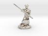 Muscular Dragonborn Monk with Quarterstaff  3d printed
