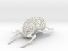 COLEOPTERA Filigre (small) 3d printed