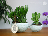 Porcelain Plant-pot in Water-Look (size XL) 3d printed Porcelain Plant-pot in Water-Look (size XL and small - Gloss Celadon Green)