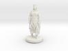 Printle C Femme 038- 1/43 3d printed