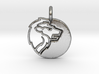 Astrology Zodiac Leo Sign 3d printed Astrology Zodiac Leo Sign in silver is shining.