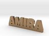 AMIRA Lucky 3d printed