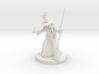 Barovian Witch 3d printed