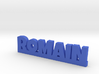 ROMAIN Lucky 3d printed