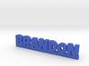 BRANDON Lucky 3d printed