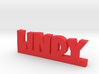 LINDY Lucky 3d printed