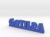 GOTILDA Lucky 3d printed