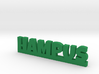 HAMPUS Lucky 3d printed