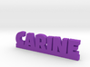 CARINE Lucky 3d printed