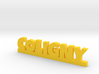 COLIGNY Lucky 3d printed