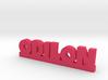 ODILON Lucky 3d printed