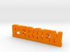 PERREN Lucky 3d printed