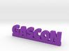 GASCON Lucky 3d printed