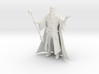 Wizard from DICE MAGIC 3d printed
