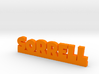SORRELL Lucky 3d printed