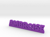 AMBROISE Lucky 3d printed