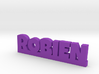 ROBIEN Lucky 3d printed