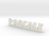PASCALE Lucky 3d printed