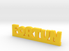 FORTUN Lucky 3d printed