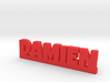 DAMIEN Lucky 3d printed