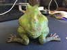 Beelzebufo (small size / middle size-color)  3d printed