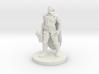 Human Paladin - Sir Baric Nylef 3d printed