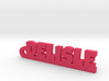 DELISLE Keychain Lucky 3d printed