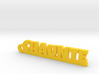 CHAUNTE Keychain Lucky 3d printed