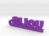 BIJOU Keychain Lucky 3d printed