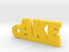 AKE Keychain Lucky 3d printed