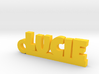 LUCIE Keychain Lucky 3d printed