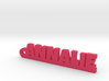 ANNALIE Keychain Lucky 3d printed