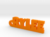 RYLEE Keychain Lucky 3d printed